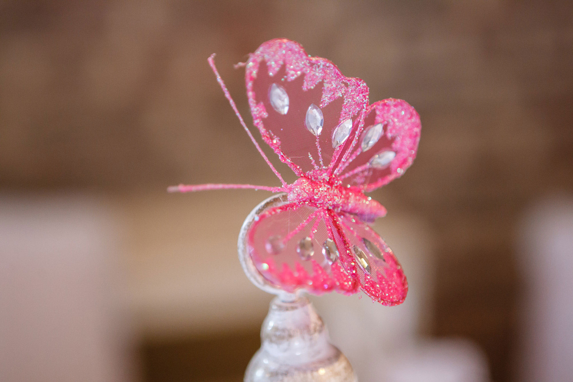 butterfly at wedding