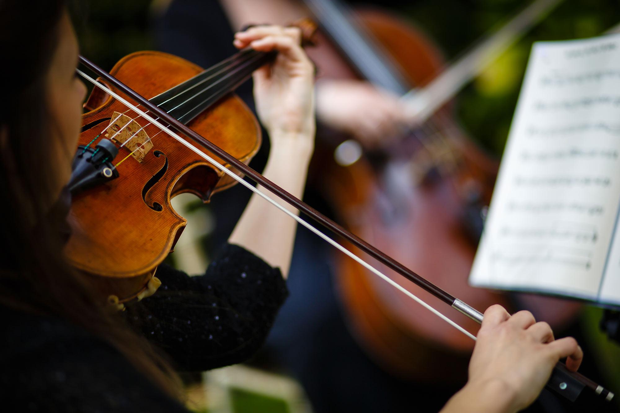 violinist at wedding