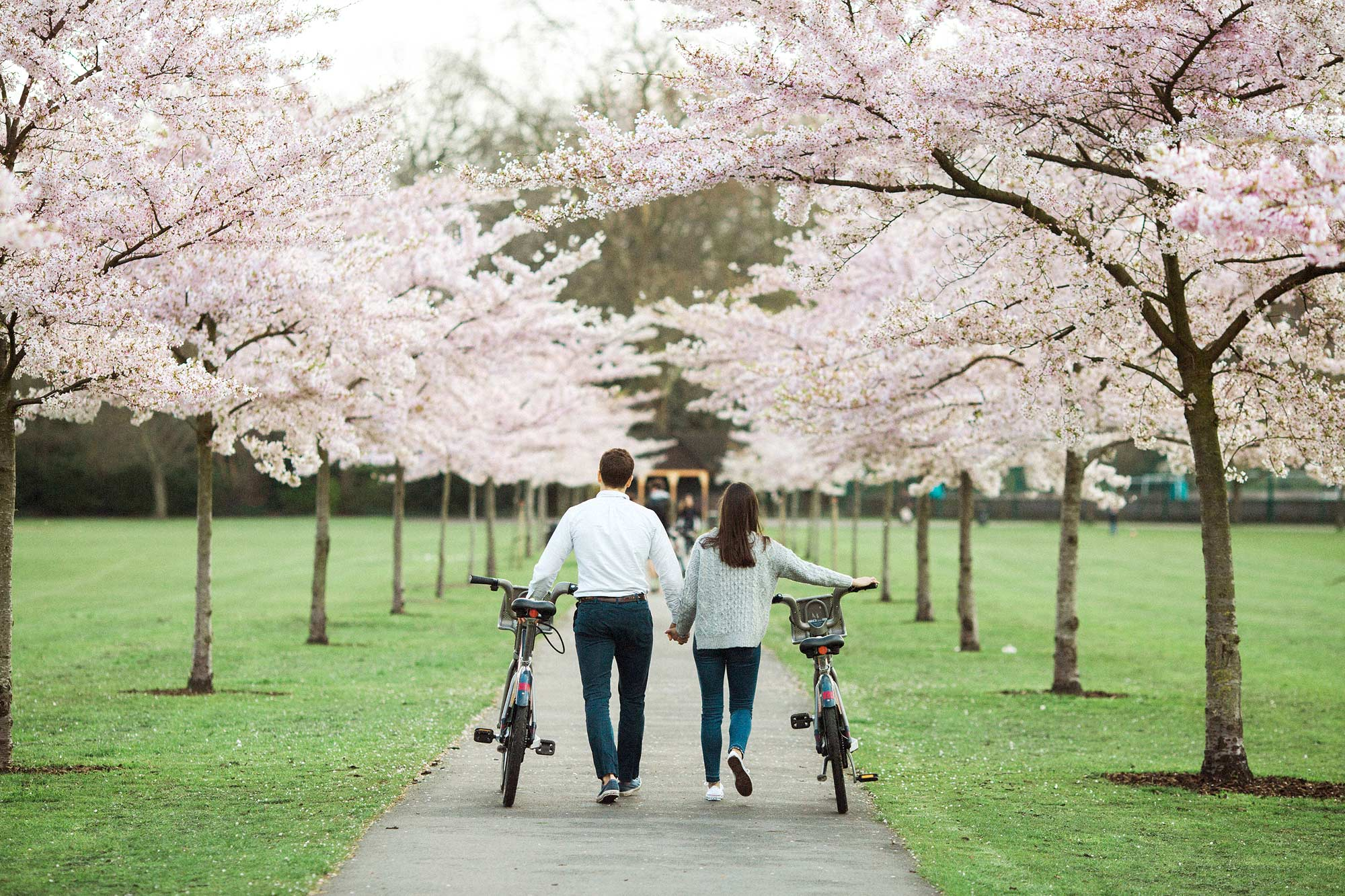 cherry blossom engagement photographer