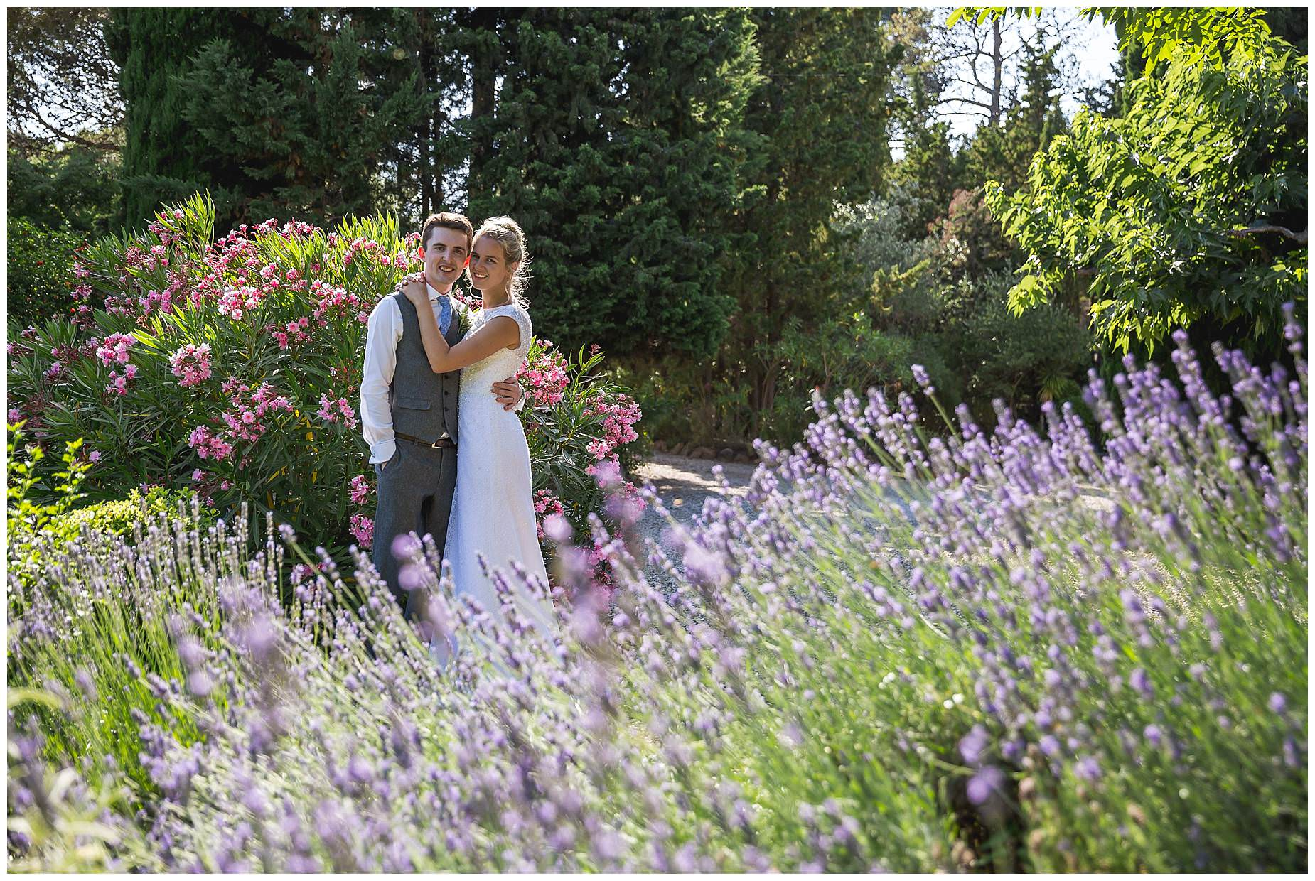 lavender pictures france wedding