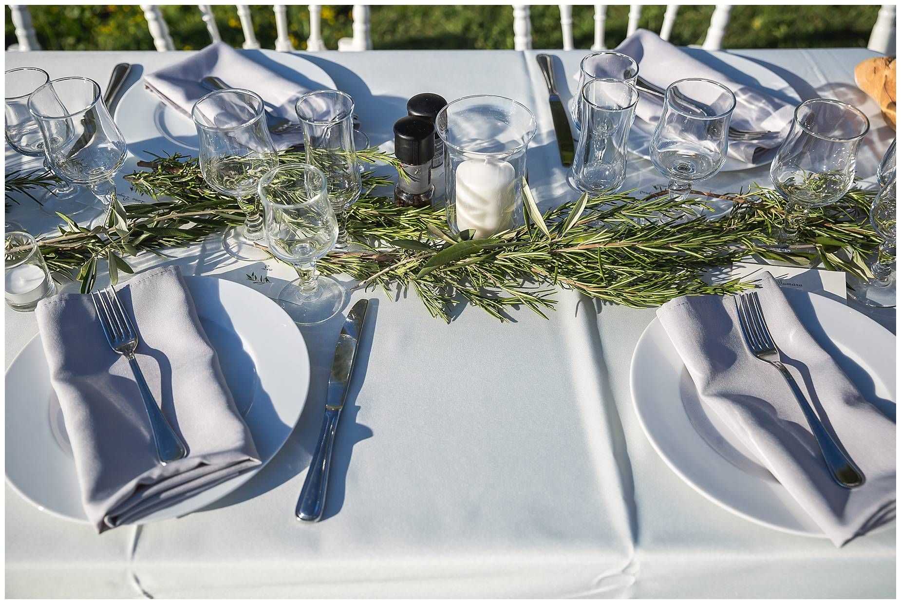 olive branches wedding decorations