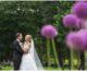 Harvard wedding photographer